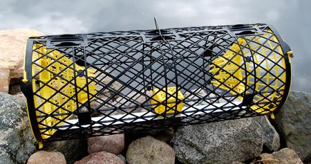 Trappy kräftburar för kräftfiske